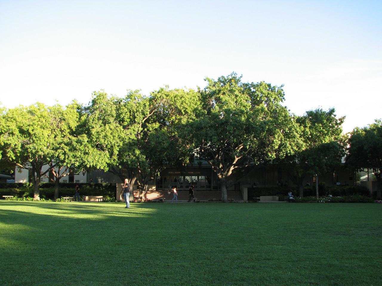 2006 09 27 Wed - Biola University Library is somewhere behind those trees 1