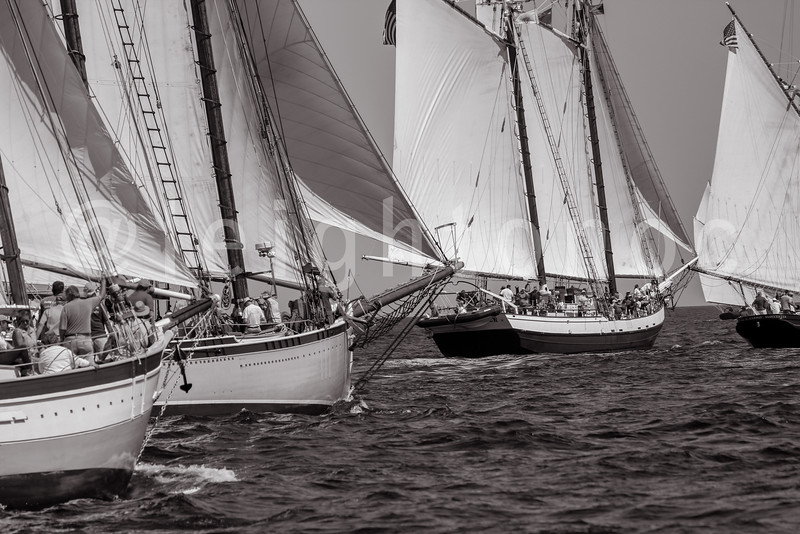 9-6-15-gloucester-schooner-race-leighton-0130