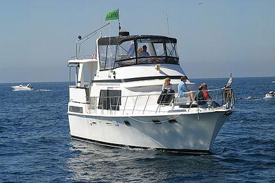 Trinity (Escort Boat)
