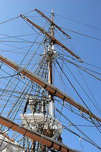 Pilgrim's mast