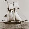 Pride of Baltimore - under sail