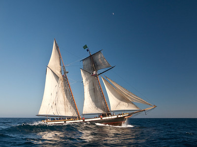 "Tall ship ""Lynx"" under sail"
