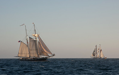 "Tall ships ""Californian"" and ""Irving Johnson"""