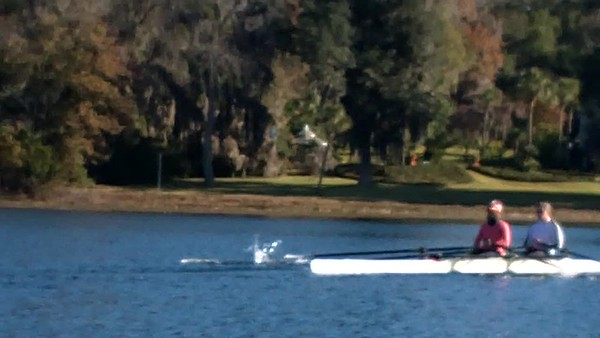 Tallahassee Rowing - Sunday 12.10.17