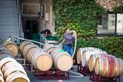 Talley Vineyards 20170921-116