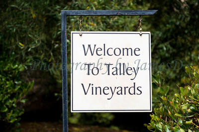 Talley Vineyards 20170921-193