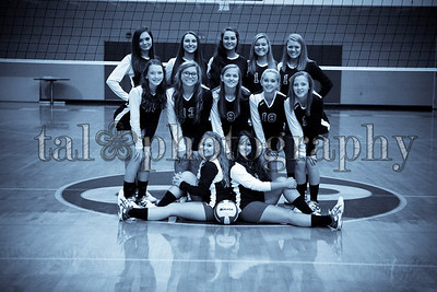 CCVolleyball2013-14