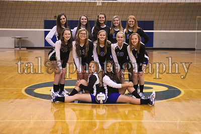 CCVolleyball2013-15