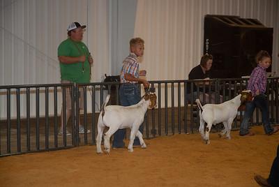 20180811_taloga_goats-8