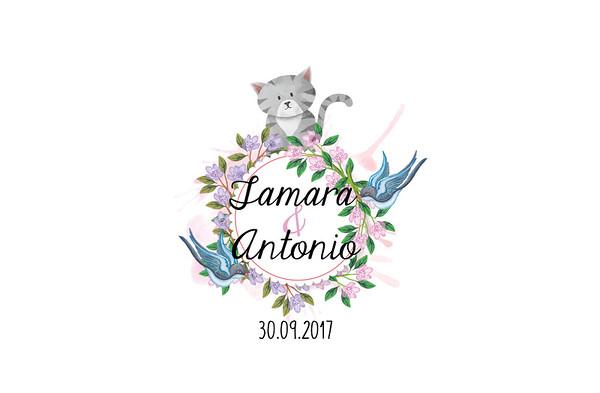 Tamara & Antonio - 30 septiembre 2017