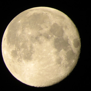 5_2_21 Pink Moon