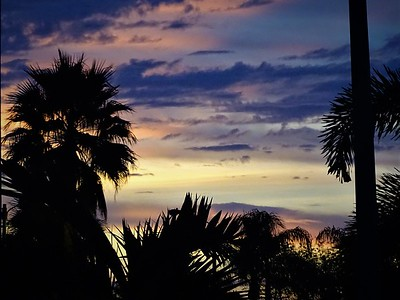 Florida Winter sky
