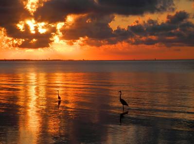 7_10_20 Social distancing at sunrise
