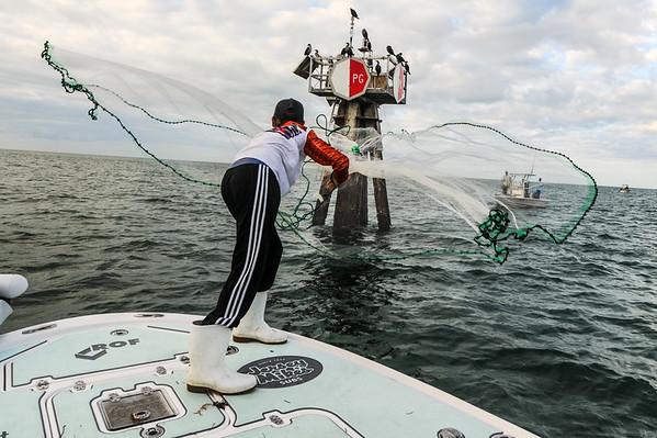 Tampa Bay fishing 1-16-2017