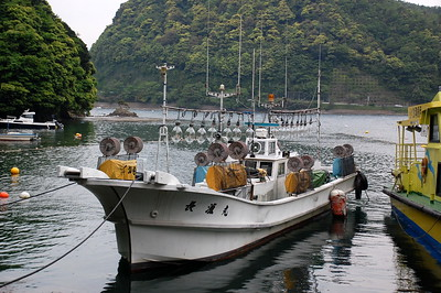 Boat used for squid catching