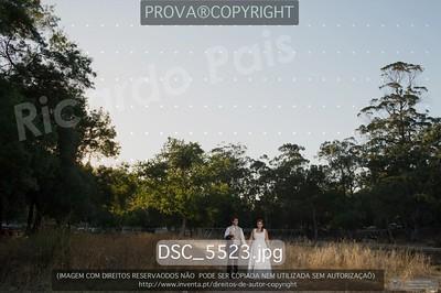 DSC_5523