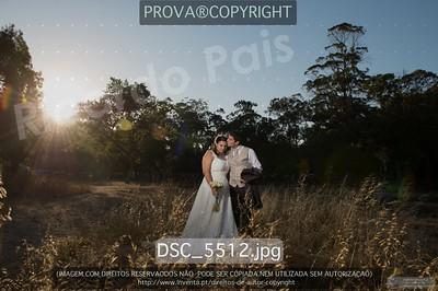 DSC_5512