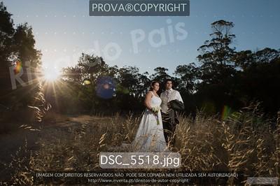 DSC_5518