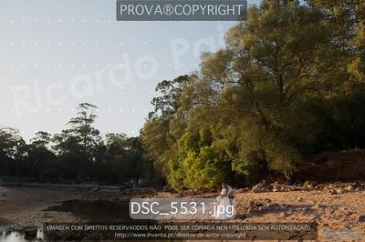DSC_5531