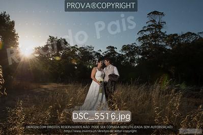 DSC_5516