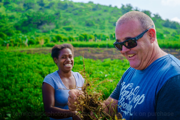 Vanuatu, Tanna, Tanna Farms, Peanut Harvest, 2016 Feb, #42
