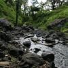 Hike to Mt. Kilimanjaro waterfalls: waterfall's river