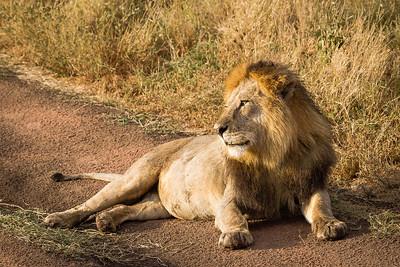 130813_Tanzania_2013-card1347