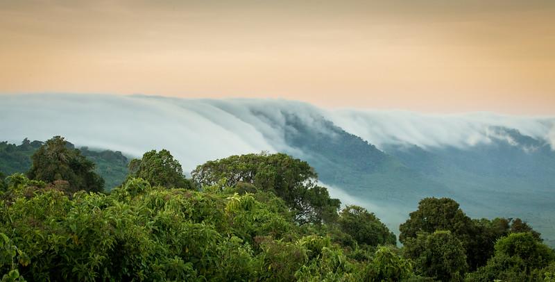 Ngorongoro Crater Rim, Tanzania