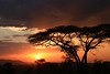 Sunset on the Serengeti -  Serengeti National Park, Tanzania, Africa - Cathryn Ren - February 2016