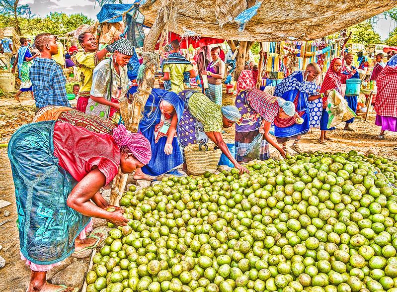 """fruit of the Baobab tree"""