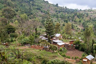 Lushoto To Lukozi  - Usmabara Mountains -  Tanzania _-40