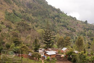Lushoto To Lukozi  - Usmabara Mountains -  Tanzania _-39