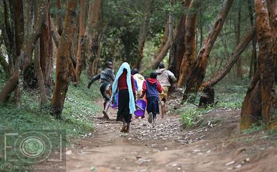 Lushoto To Lukozi  - Usmabara Mountains -  Tanzania _-27