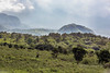 Looking towards Mount Meru crater, Arusha National Park, Tanzania