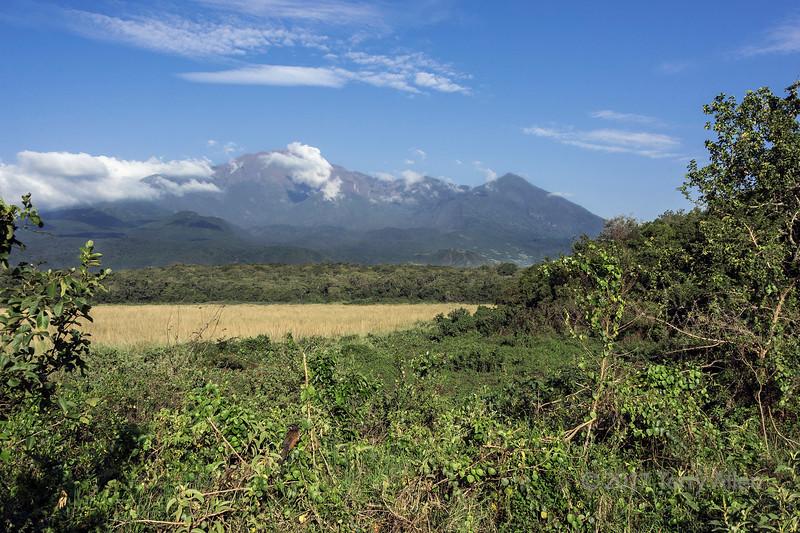 Mount Meru crater and Little Meru 1, early morning, Arusha NP, Tanzania