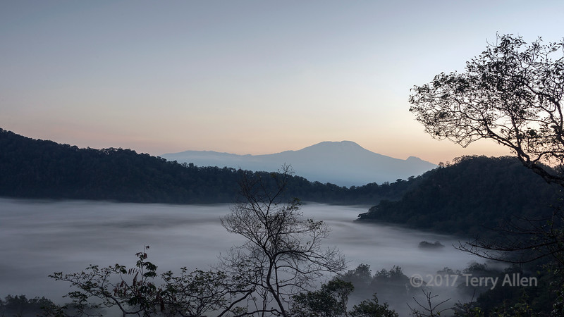 Ngurdoto crater with swirling mists and Mt Kilimanjaro at sunrise, Arusha NP, Tanzania