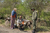 Guide and tourist examining buffalo skulls with a ranger 3, Arusha NP, Tanzania