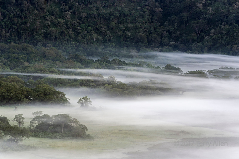 Mists of Ngurdoto Crater