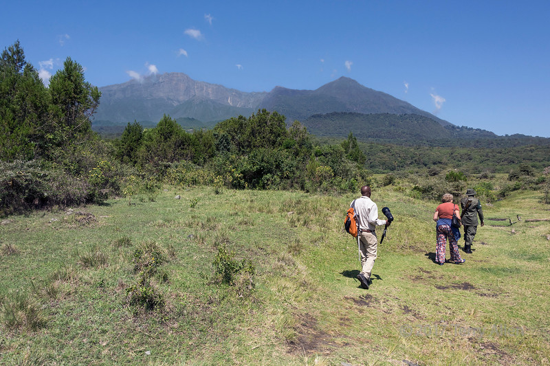 Walking towards Maio Falls of the Jekukumia River below Mount Meru 1, Arusha NP, Tanzania