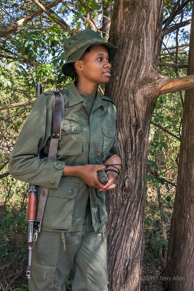 Woman park ranger with rifle leaning on a tree, Arusha NP, Tanzania