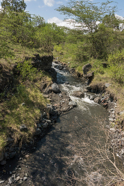 Jekukumia River flowing down from Mount Meru, Arusha NP, Tanzania