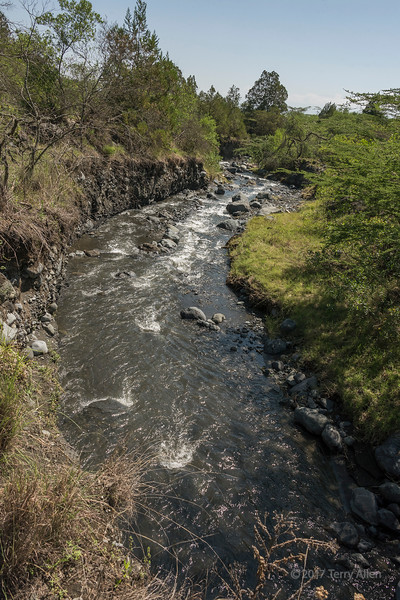 View of Jekukumia River flowing down from Mount Meru, Arusha NP, Tanzania