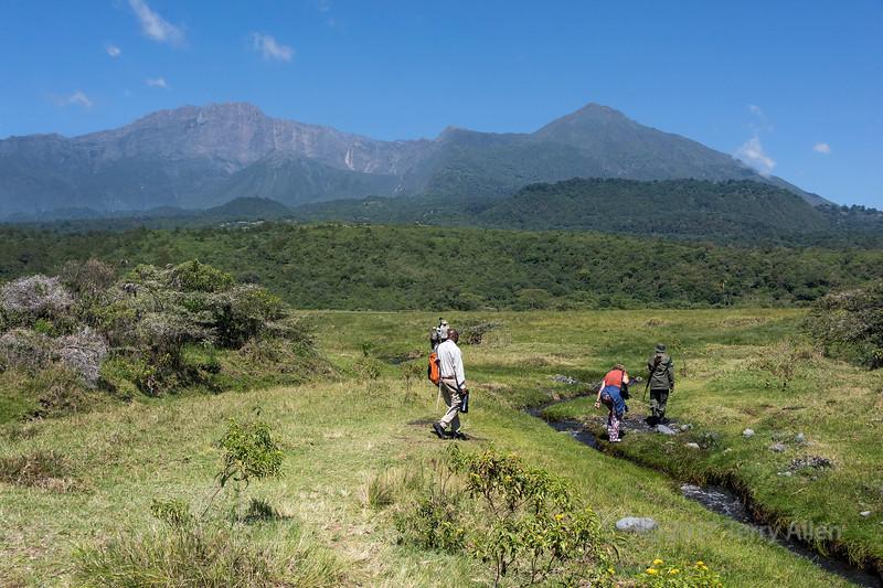 Walking towards Maio Falls of the Jekukumia River below Mount Meru 3, Arusha NP, Tanzania