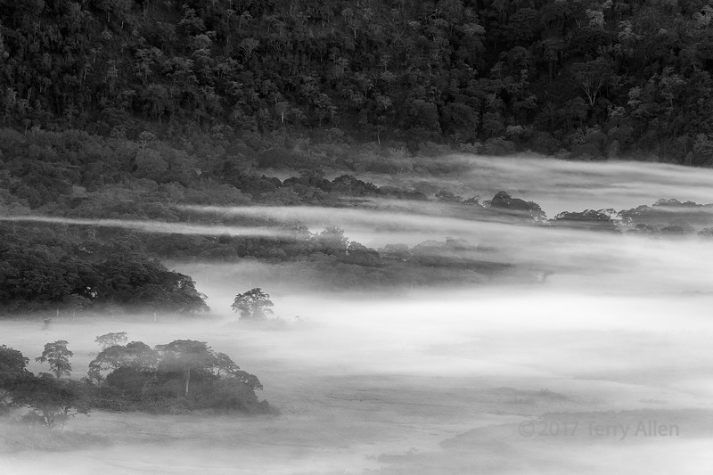 Mists of Ngurdoto Crater gradually clearing in the early morning, Arusha NP, Tanzania BW
