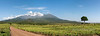 Mount Meru panoramic with road and Momela village, Aursha National Park, Tanzania