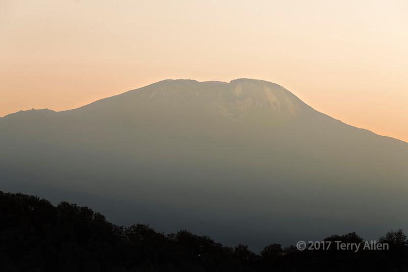 Sunrise hitting the top of Mt Kilimanjaro seen from Arusha NP, Tanzania