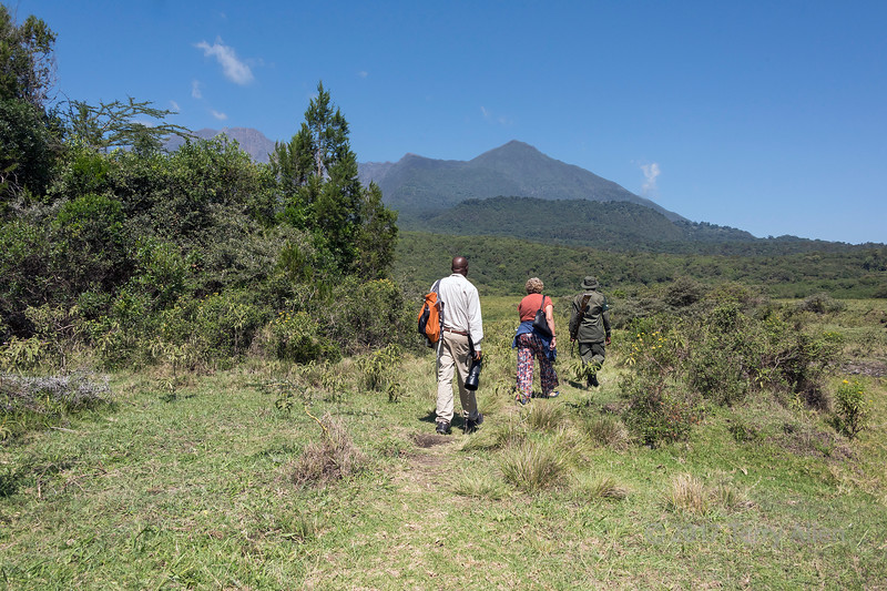 Walking towards Maio Falls of the Jekukumia River below Mount Meru 2, Arusha NP, Tanzania