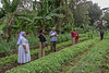 Visit of agricultural experts to vegetable farm in Arusha, Tanzania