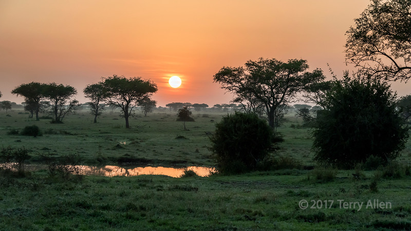 Sunrise reflected in a rain pool, Grumet Game Reserve, Serengeti, Tanzania