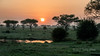 Sunrise reflected in a rain pool, Grumet Game Reserve, Serengeti, Tanzania